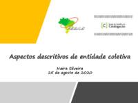 Aspectos descritivos de entidades coletivas - 2020-08-25.pdf