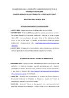 Relatório de Gestão 2018-2019 da Comissão Brasileira de Direitos Autorais e Acesso Aberto (CBDA³)