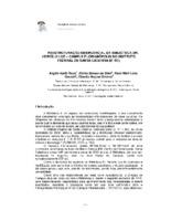 http://febab1.hospedagemdesites.ws/temp/snbu/SNBU2012_255.pdf